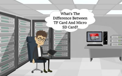 What's The Difference Between TF Card And Micro SD Card?